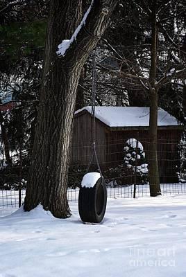 Photograph - Winter Tire Swing by Frank J Casella