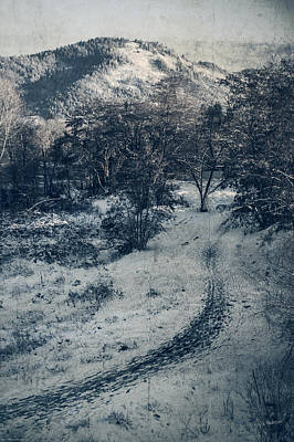 Photograph - Winter Trail by Mick Anderson
