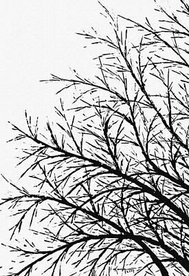 Painting - Winter Tree by Kume Bryant