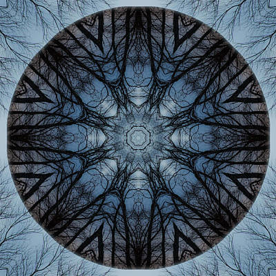 Photograph - Winter Tree Mandala 3 by Beth Sawickie
