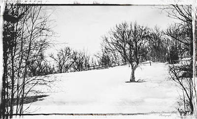 Photograph - Winter Tree On Hill by Darlene Bell