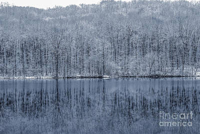 Bare Trees Digital Art - Winter Trees And Lake In Blue by Randy Steele