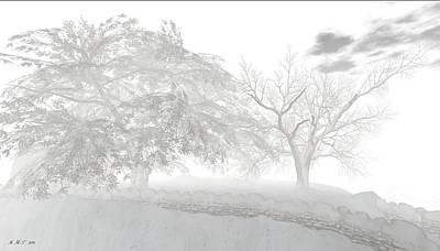 Drawing - Winter Trees By Stone Path by Amanda Holmes Tzafrir