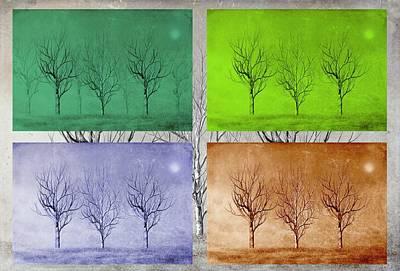 Winter Trees  Art Print by David Dehner