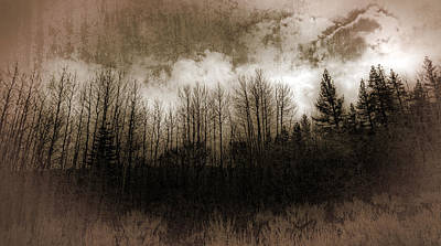 Winter Trees Print by Dianne Phelps
