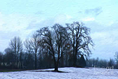 Winter Trees Art Print by Nur Roy
