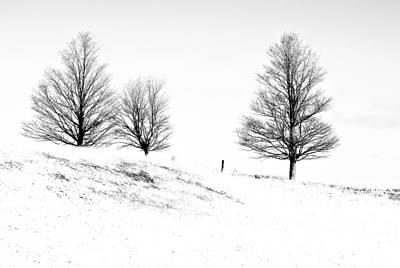 Winter Trinity Infrared Art Print by Steve Harrington