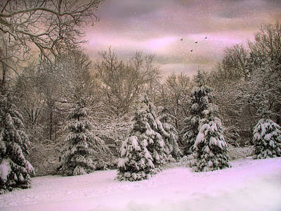 Photograph - Winter Twilight by Jessica Jenney