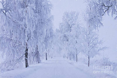 Snowed Trees Painting - Winter by Veikko Suikkanen