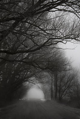 Photograph - Winter Walk by Sarah Boyd