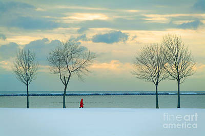 Photograph - Winter Walker by Mark Avery