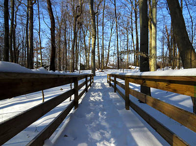 Photograph - Winter Walkway by Ron Grafe