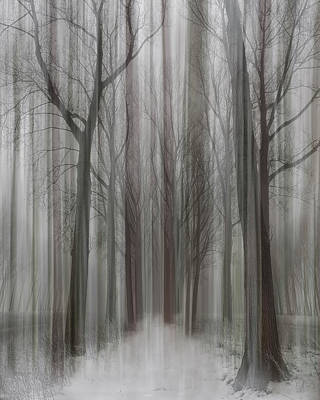 Blur Photograph - Winter Walz by Yvette Depaepe