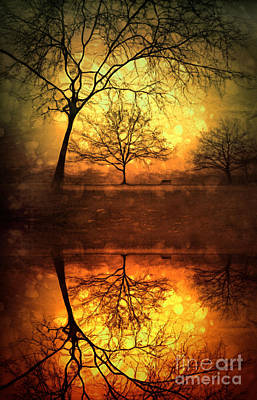 Photograph - Winter Warmth by Tara Turner