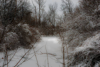 Photograph - Winter Waterway by Edward Peterson