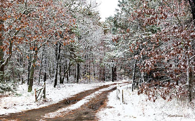 Photograph - Winter Welcome On Cape Cod by Michelle Constantine