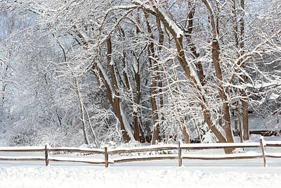 Xmas Photograph - Winter - Westfield Nj - Snow Day by Mike Savad