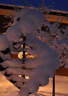 Photograph - Winter Whirligig by Jim Brage