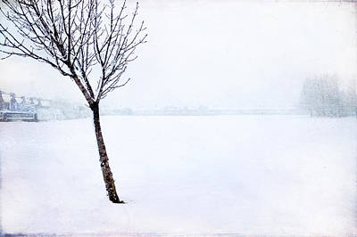 Photograph - Winter Whiteout by Christopher Rees