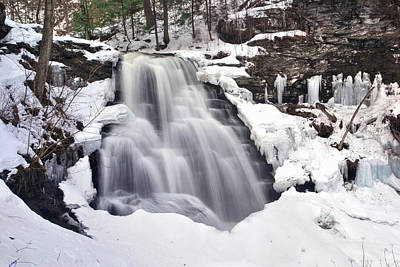 Photograph - Winter Wilds At Erie Falls by Gene Walls