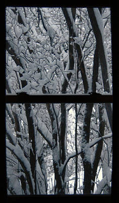 Winter Window Art Print
