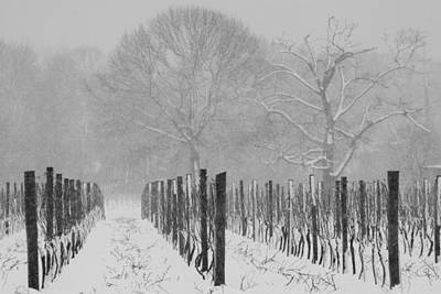 Winter Wine Art Print