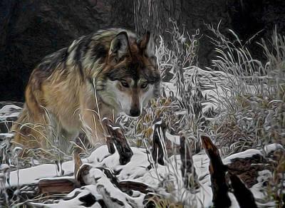 Canines Digital Art - Winter Wolf Digital Art by Ernie Echols