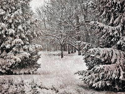 Winter Wonder 7  Art Print by Maria Huntley