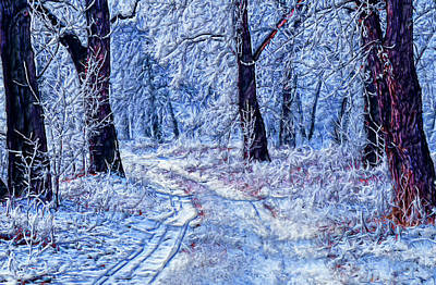 Painting - Winter Wonder Land by Bruce Nutting