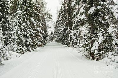 Winter Wonder Land Art Print