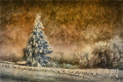 Winter Wonder Art Print by Lois Bryan