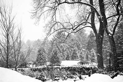 Photograph - Winter Wonderland by Allan Millora Photography