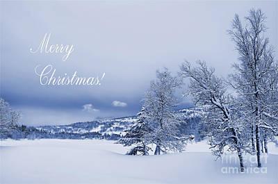 Winter Wonderland Photograph - Winter Wonderland At Christmas by Gry Thunes