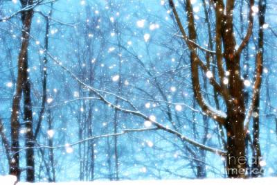 Photograph - Winter Wonderland by Brenda Schwartz