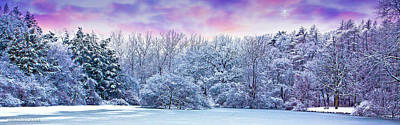 Photograph - Winter Wonderland by Ed Dooley