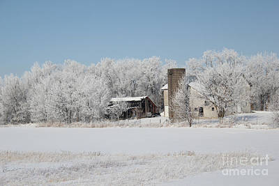 Photograph - Winter Wonderland Farm by Robyn Saunders