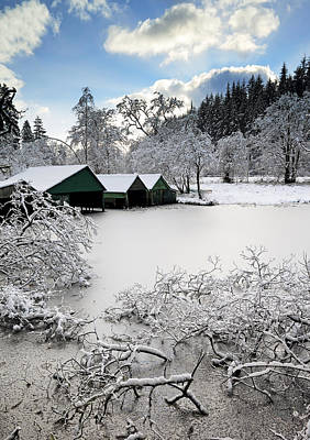 Photograph - Winter Wonderland by Grant Glendinning