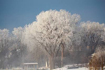 Photograph - Winter Wonderland by John Dart