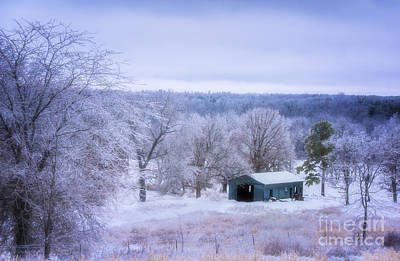 Photograph - Winter Wonderland by Julie Clements