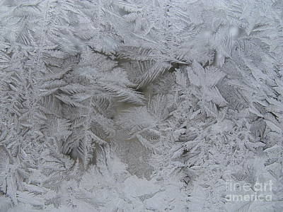 Photograph - Winter Wonderland Series #01 by Ausra Huntington nee Paulauskaite