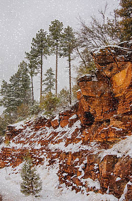 Photograph - Winter Wonderland Southwest Style  by Saija  Lehtonen