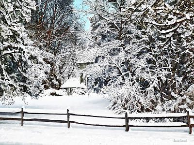 Photograph - Winter Wonderland by Susan Savad