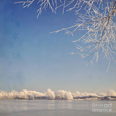Winter Wonderland With Snowflakes Decoration. Print by Lyn Randle