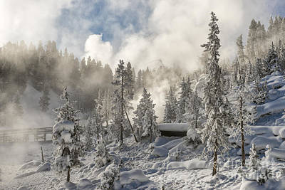 Winter Wonderland - Yellowstone National Park Art Print by Sandra Bronstein
