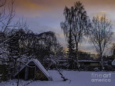 Photograph - Winter Wood Store by Michael Canning
