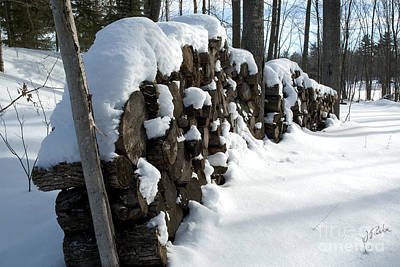 Photograph - Winter Wood Supply by Jessie Parker