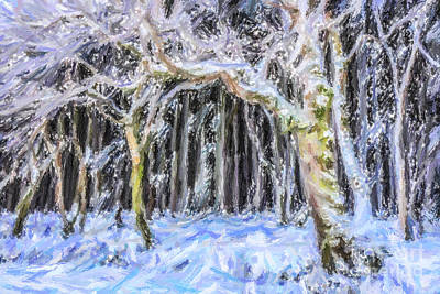 Digital Art - Winter Woodland by Liz Leyden