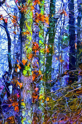 Woodlands Scene Mixed Media - Winter Woods by Brian Stevens