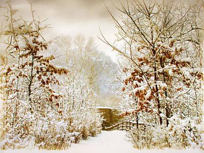 Rural Digital Art - Winter Woods by Jessica Jenney
