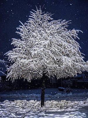 Winter Wrapping Art Print by Jo-Anne Gazo-McKim